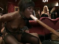 Three girls make a great erotic show